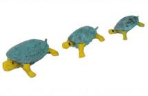 tartaruga-familia